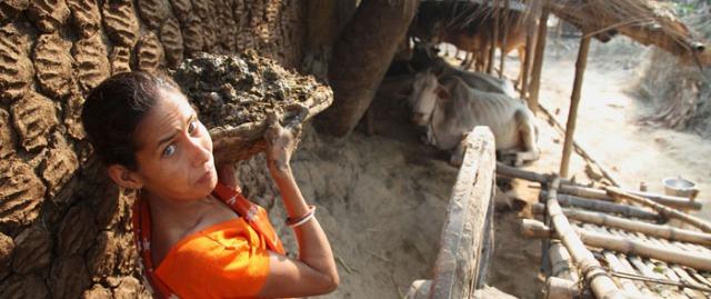 2. animalfeeding