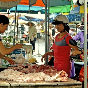 Research for safer pork products inVietnam