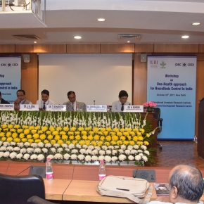 Animal health experts discuss approaches for tackling brucellosis inIndia