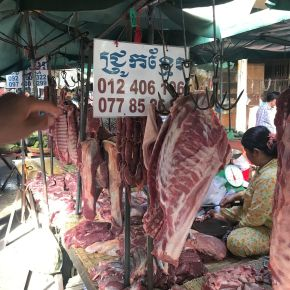 Collaboration between government and researchers to improve food safety inCambodia