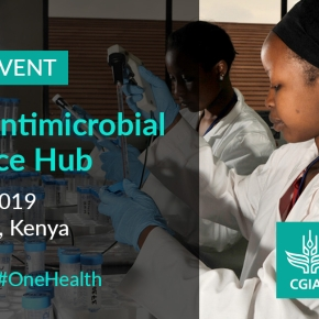 Launching today—CGIAR Antimicrobial Resistance Hub