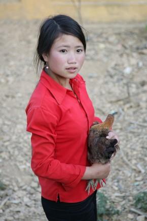 Video: Gender in livestockdevelopment