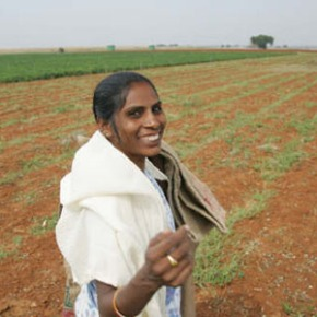 National dialogue sets the stage for road map on integrated livestock development inIndia